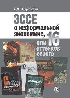 Светлана Барсукова - Эссе о неформальной экономике, или 16 оттенков серого