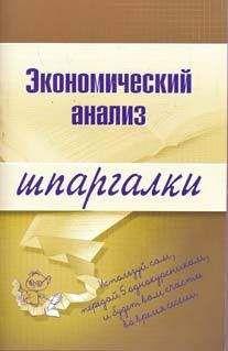 Анна Литвинюк - Экономический анализ
