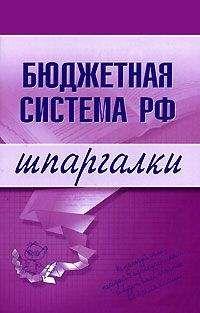 Наталья Бурханова - Бюджетная система РФ