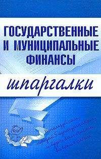 Мария Новикова - Государственные и муниципальные финансы