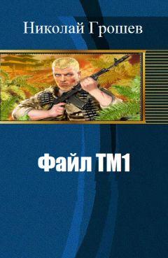 Николай Грошев - Файл ТМ1 (СИ)