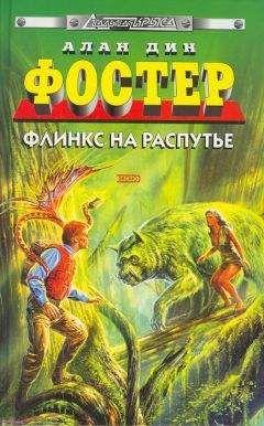 Алан Фостер - Флинкс на распутье