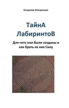 Владимир Жикаренцев - Тайна лабиринтов. Для чего они были созданы и как брать из них Силу