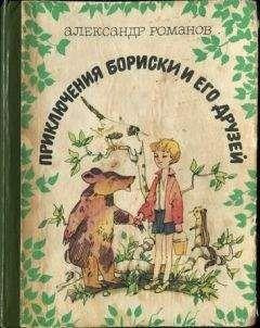 Александр Романов - Приключения Бориски и его друзей