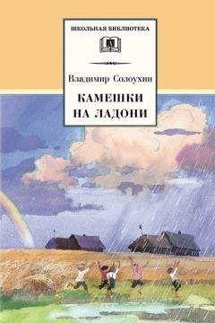 Владимир Солоухин - Камешки на ладони (сборник)
