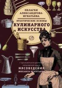 Пелагея Александрова-Игнатьева - ПРАКТИЧЕСКИЕ ОСНОВЫ КУЛИНАРНОГО ИСКУССТВА