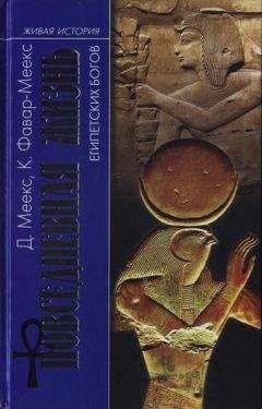 Димитри Меекс - Повседневная жизнь египетских богов
