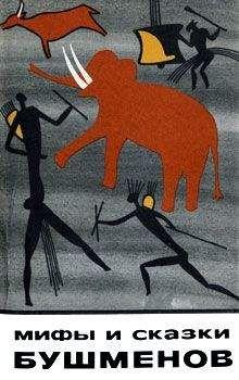 Автор неизвестен - Эпосы, мифы, легенды и сказания - Мифы и сказки бушменов