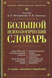 В. Зинченко - Большой психологический словарь