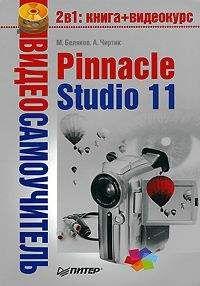 Михаил Беляков - Pinnacle Studio 11