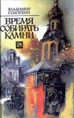Владимир Солоухин - Продолжение времени