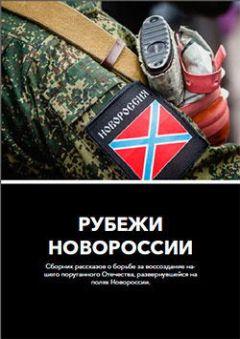 Владислав Ельников - Рубежи Новороссии