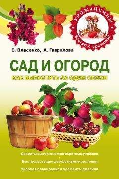 Анна Гаврилова - Сад и огород. Как вырастить за один сезон