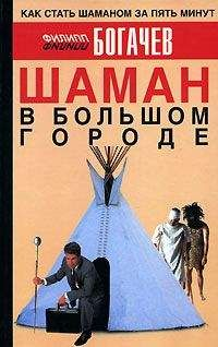 Филипп Богачев - Шаман в большом городе