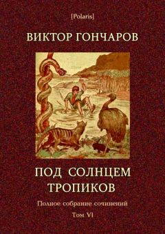 Виктор Гончаров - Под солнцем тропиков. День Ромэна