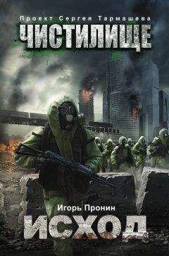 Игорь Пронин - Чистилище. Исход